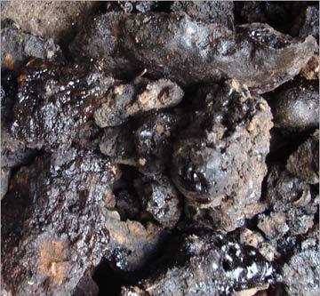 Shilajit Colloidal Minerals Fulvic Humic Acid